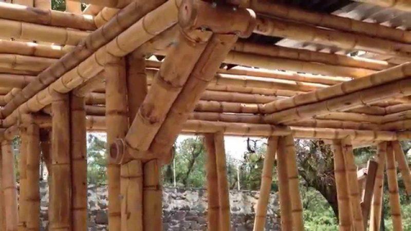 Construir con bambú, mucho más que una tendencia